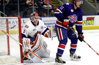 Bridgeport Sound Tigers Players .vs. Rochester. Jan 2, 2016