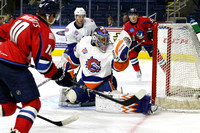 Sound Tigers .vs. Springfield. Oct 30, 2016.