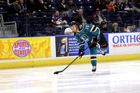 Worcester Sharks