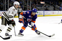 Sound Tigers .vs. Hershey. Feb 12, 2017.