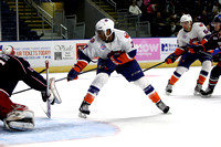 Bridgeport Sound Tigers players only .vs. Springfield Falcons Apr. 1, 2014