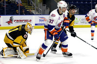 Sound Tigers .vs. Wilkes Barre Scranton. Nov 25, 2016.